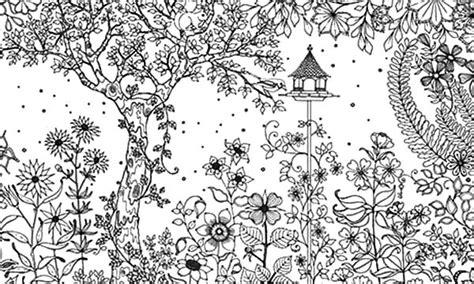 amazing secret garden coloring pages color luna