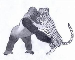 Tiger vs Gorilla by Joe09Art on DeviantArt