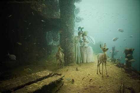 stavronikita project underwater photography  andreas franke