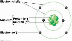 Labeled Diagram Of Atoms : micro exam 2 biology 211 with bourret at university of ~ A.2002-acura-tl-radio.info Haus und Dekorationen