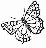 Butterfly Coloring Printable Pages Template Flying Templates Colouring Colors sketch template