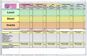 Pregnancy diet spreadsheet pregnancy diet template for Nutrition spreadsheet template