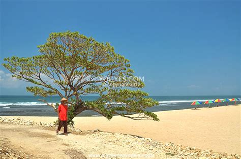 pok tunggal beach  hidden sanctuary  beautiful scenery