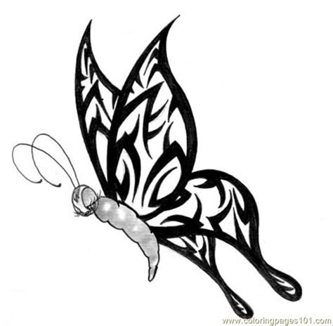 butterfly tattoo design coloring page  butterfly