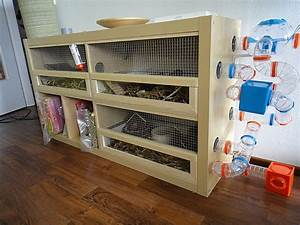 IKEA HACK: expedit into gerbil habitat, awesome! -- This ...
