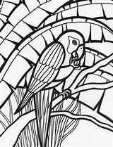 Coloring Parrot Pages Rainforest Amazing Adult Colouring Parrots Birds Print Adults Mosaic Bird Animal Colornimbus sketch template