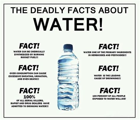 The Deadly Facts About Water   Introspective World