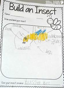 78 Best Images About Insect Crafts And Treats On Pinterest
