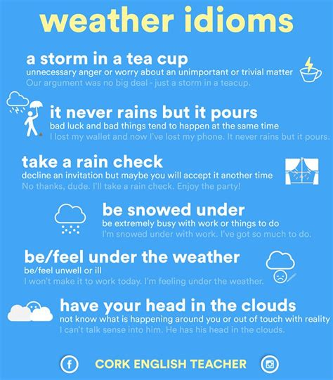 best idioms best 25 idioms ideas on idioms