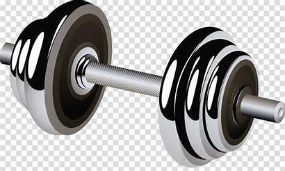 Fitness Cartoon Exercise Equipment Weights Clipart Sports