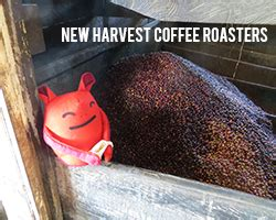 Coffee harvest seasons don't work exactly the same way as produce crops do in the us. New Harvest Coffee Roasters in Pawtucket - Farm Fresh RI