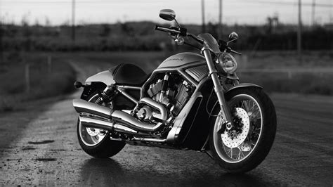 Harley Davidson Wallpaper  1920x1080 #47752