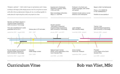 Resume Timeline Format by 16 Infographic Resumes A Visual Trend About