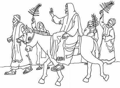 Jesus Palm Coloring Jerusalem Sunday Enters Drawing