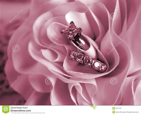 wedding rings soft mood pink stock image image