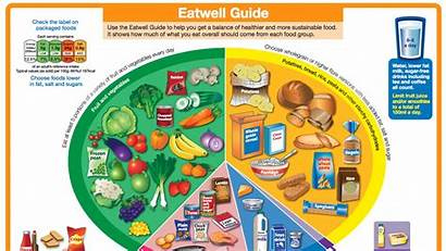 Eatwell Guide Eat Plate Huffingtonpost Eating Healthy
