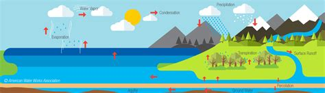 Water Cycle Images Water Cycle By Global Water Partnership A Water Secure