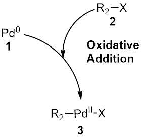 Suzuki Coupling Reaction by Suzuki Reaction