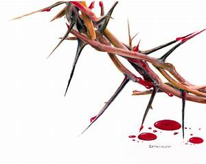 Crown Of Thorns Drawing by Dennis Schmelzer