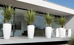 Moderne Vasen Von Designer : den richtigen blumentopf finden mit hornbach schweiz ~ Bigdaddyawards.com Haus und Dekorationen