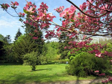 Botanischer Garten Frankenburg by Botanischer Garten Frankenburg L 228 Dt Zum Picknick Ein
