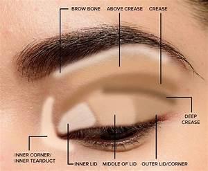 Where To Apply Eyeshadow   Eye Makeup Diagram