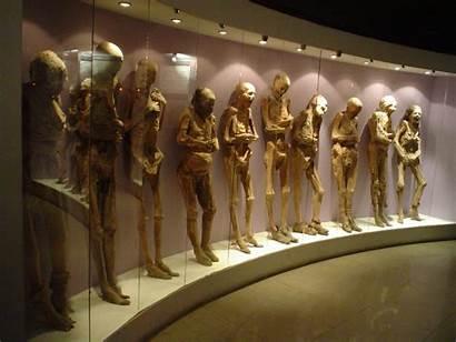 Guanajuato Momias Las Bizarre Mummies Mummy Museum