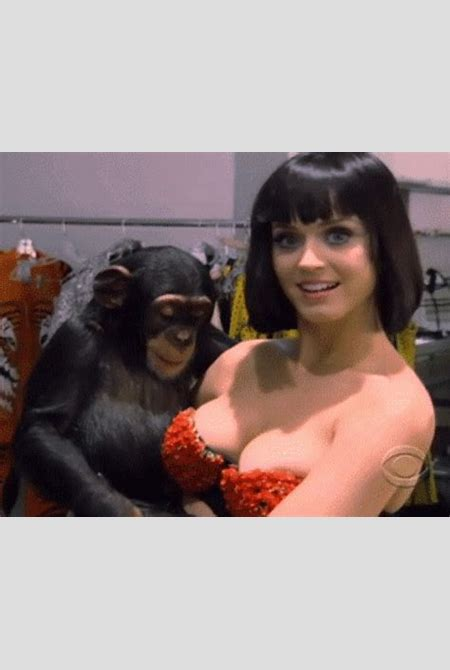 Sexiest Katy Perry GIFs You've Ever Seen [36 gifs] | NSFW Magazine