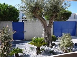 Jardin méditerranéen paysagiste orphis Paysagiste jardin sec