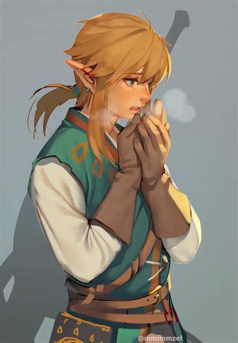 Botw Link Fanart Legend Of Zelda Pinterest Legend Of