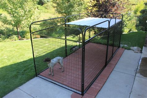 outdoor kennel flooring ideas indoor kennel flooring ideas gurus floor