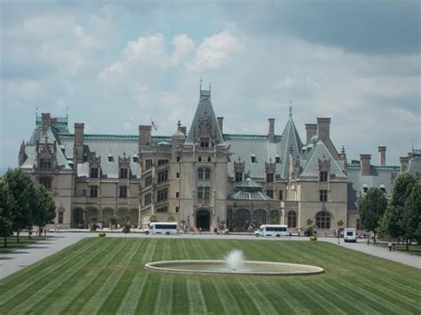 view from carriage ride picture of biltmore estate