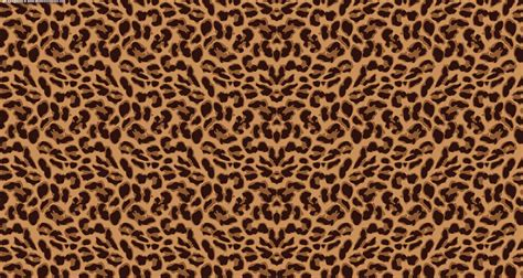 Leopard Animal Print Wallpaper - leopard background wallpapersafari