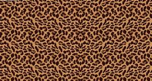 Leopard Print Wallpaper (47 Wallpapers) – HD Wallpapers