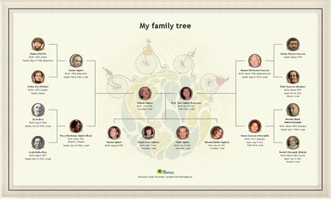 Create A Beautiful Family Tree Chart Online & Print It As
