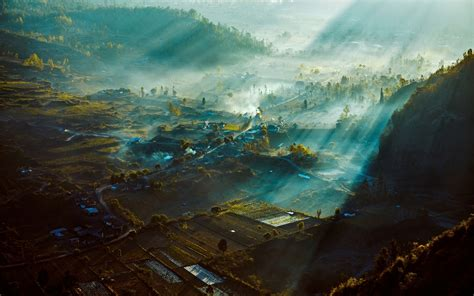 wallpaper  px bali field indonesia