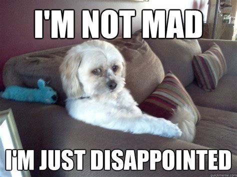 Im Mad Meme - disappointment quotes sayings disappointment picture quotes