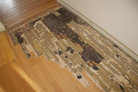 Asbestos linoleum flooring photos