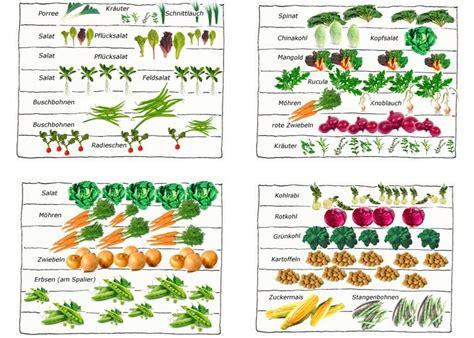 Gemüsegarten, Garten Und