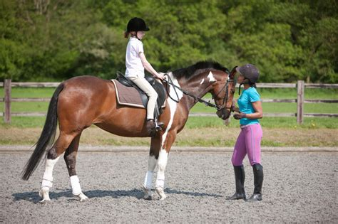 riding lessons horseback child young children instructor horse horses lesson ride equestrian take boys read