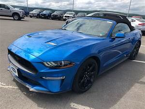 Violette Ford Grand Falls | 2019 Ford Mustang ECOBOOST PREMIUM | #20643