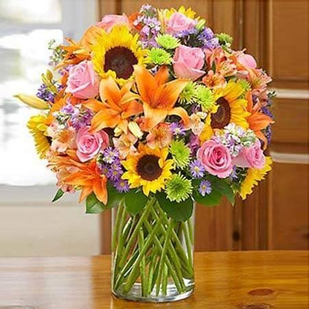 Ferns N Petals Comes Up with a Complete Galore of Gift Opt