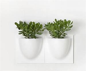 Cache Pot Mural : pot mural pour plante interieur ~ Premium-room.com Idées de Décoration