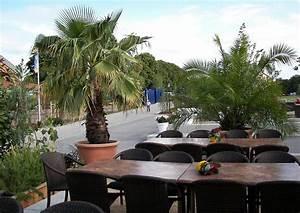 überwintern Von Palmen : gestaltungsbeispiel mediterrane k belpflanzen palmen terrasse ~ Michelbontemps.com Haus und Dekorationen