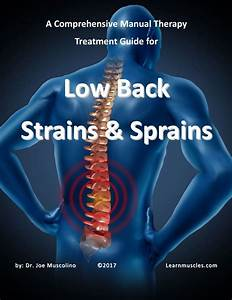 A Comprehensive Manual Therapy Treatment Guide For Low