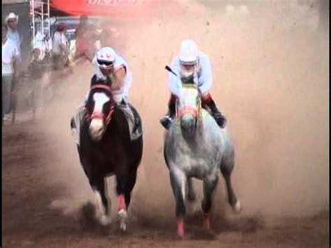 El H2 contra el Samurai | Carrera de caballos | Horse ...