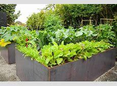 Queen Anne Steel Raised Bed Garden — Seattle Urban Farm