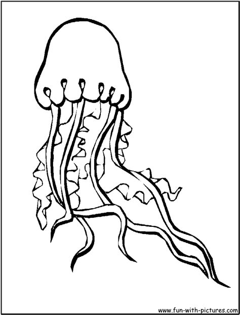 Coloring Jellyfish by Jellyfish Coloring Page