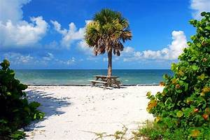 honeymoon island state parkjpg With honeymoon state park florida