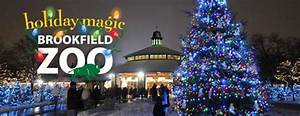 Brookfield Zoo Holiday Lights Walking In A Chicago Wonderland Holiday Activities Around